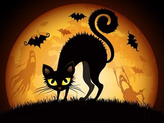 Do you believe in superstitions or curses?