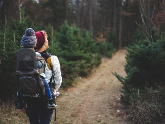 You're hiking with a friend and you realize your lost. What do you do?