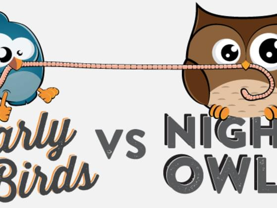 Are you a night owl or a morning bird?