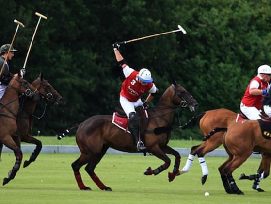 Pick a British sport.