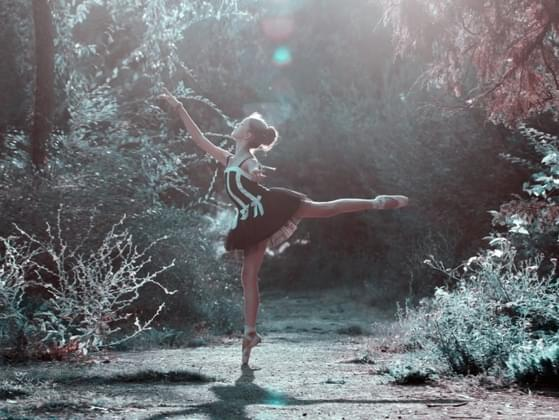 What kind of dance class would you most like to try?