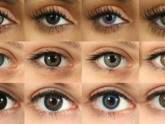 Your optometrist gives a free pair of coloured contact lenses. What colour will you choose?