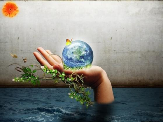 Do you recycle and try to save the earth?