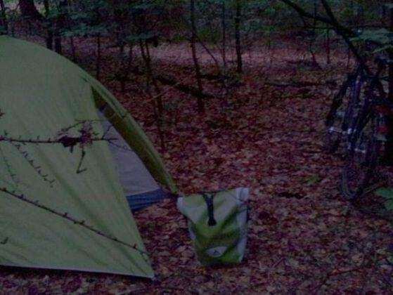 On a camping trip, one of your friends goes missing. What do you suggest?