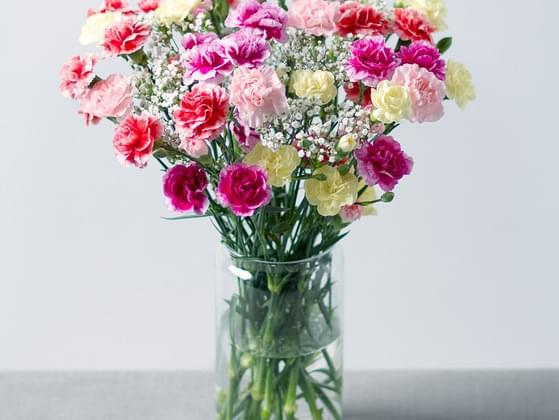 Do you like flower?