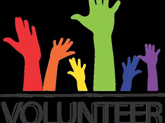 Where are you most likely to volunteer?