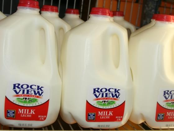 What type of milk is your favorite?