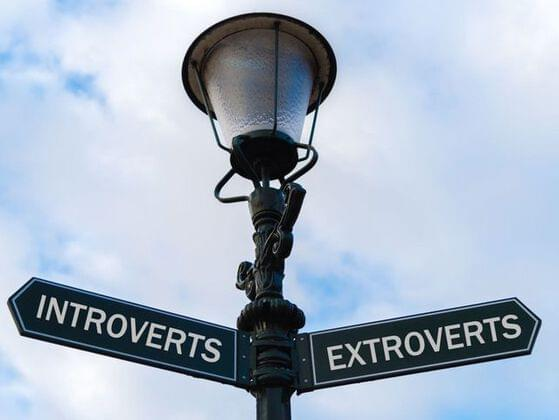 Are you an extrovert or an introvert?