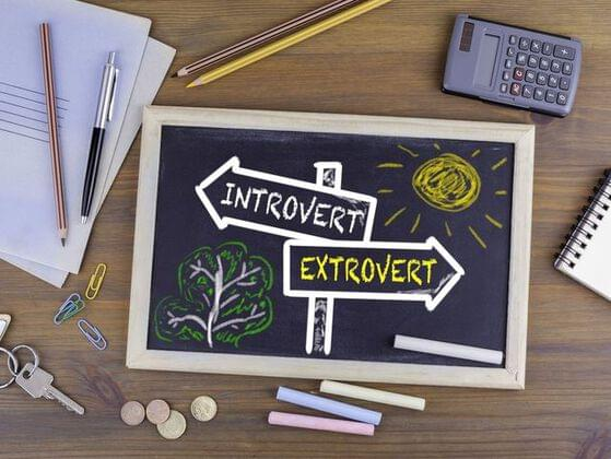 Are you more extroverted or introverted?