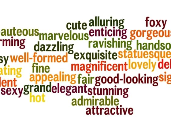 Which adjective describes you best?