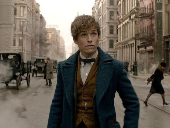 Or the 'Fantastical Beasts' series?