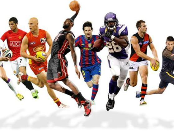 Which sport do you like to tend to?