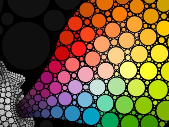 Which colour describes you?