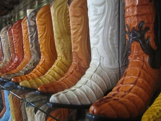 What color would your cowgirl boots be?