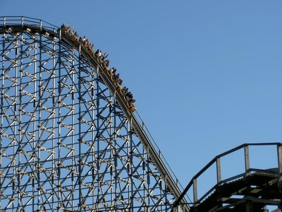 How do you feel about roller coasters?