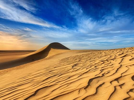 The Sahara Desert covers nearly one-third of this continent.