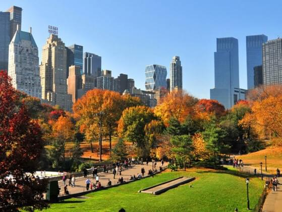 Who designed Central Park in New York City?