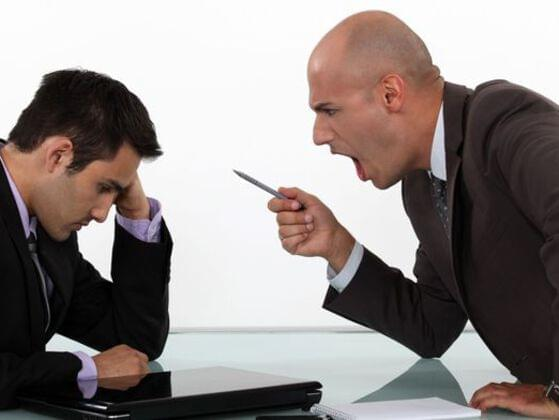 How do you react to a new coworker?