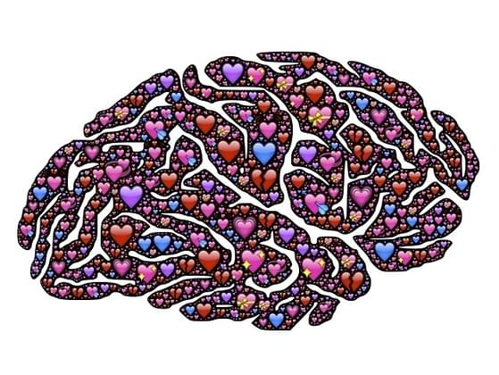 Do you think with your brain or your heart more often?