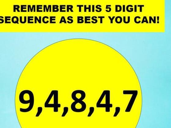 Remember this 5 digit sequence as best you can !