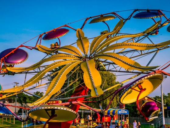 What is your favorite ride at an amusement park?