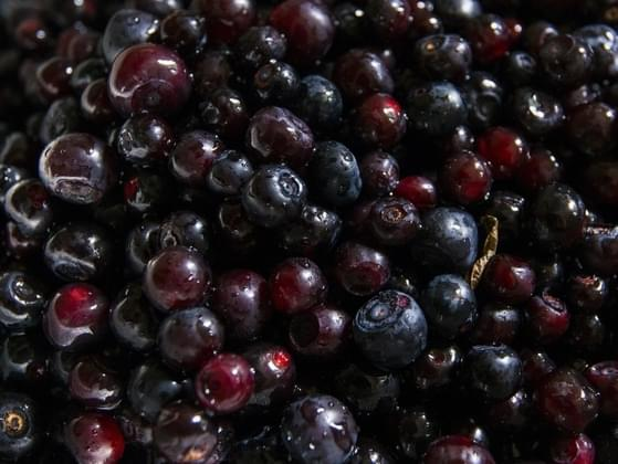 Which is better: huckleberries or strawberries?