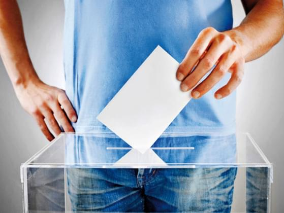 Do you usually vote in elections?