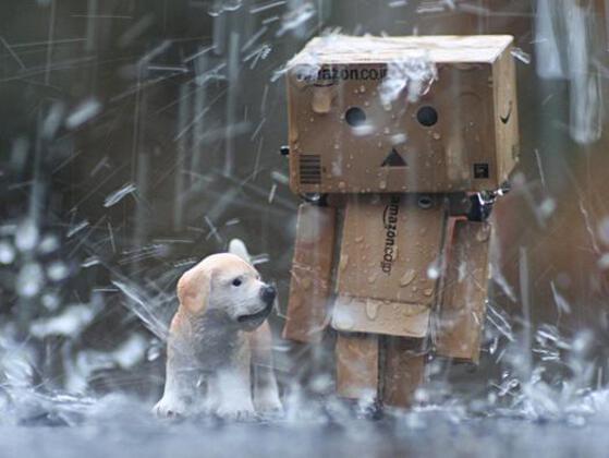 Do you like walking in the rain?