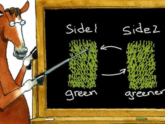 Lastly, is the grass always greener on the other side?