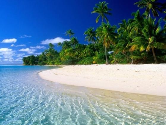 If your ideal lover was marooned on a desert island, what would he or she most miss?