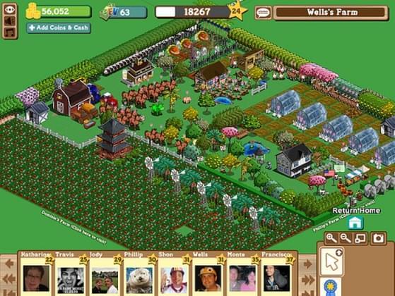 Do you play social interactive games such as Farmville?