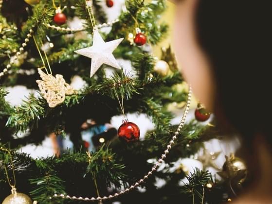 Fake christmas tree or real tree?