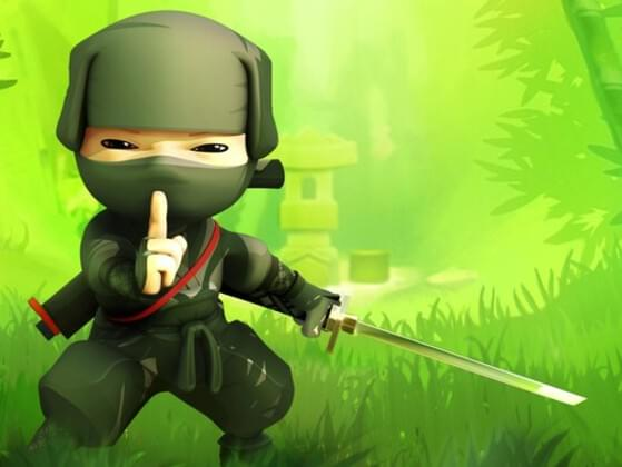 If you were a ninja what would you mostly like to do?