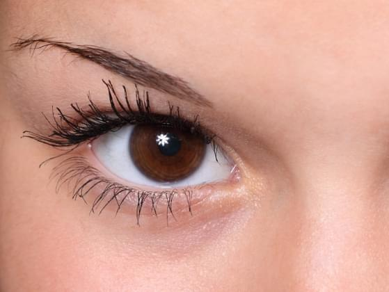 Which best describes your eyelashes?