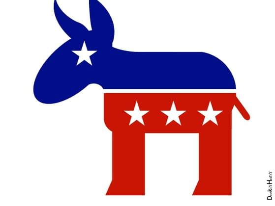 What political party do you affiliate with?