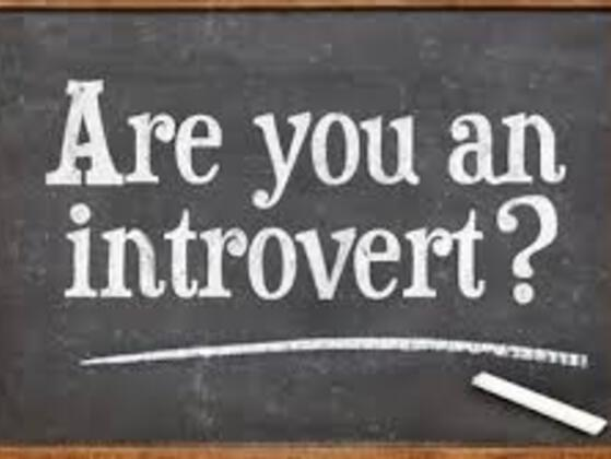 WOULD YOU CONSIDER YOURSELF INTROVERTED OR EXTROVERTED?