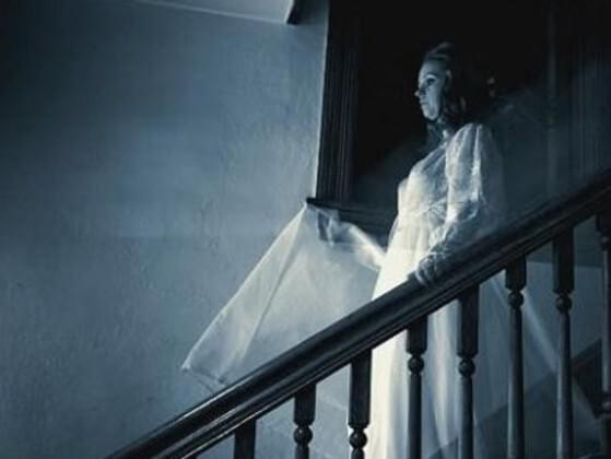 If you became ghost and encounter human, what would you do?