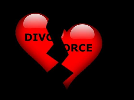 Which of the following ways has divorce affected your life?