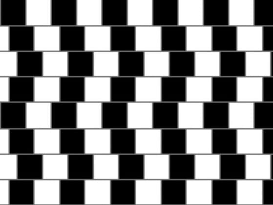 How do you see the lines shown in this image?