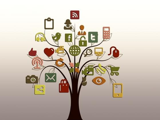Which social networking site do you prefer?