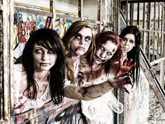 What would you do during a zombie apocalypse?