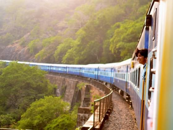 Would you rather travel by plane, train, or automobile?
