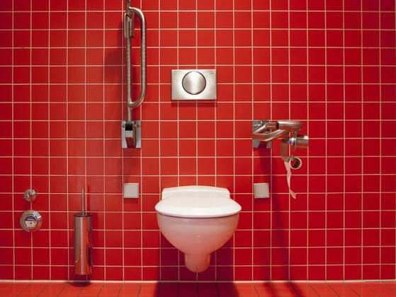 What godson to Queen Elizabeth did I invent the first flushing toilet in 1597?