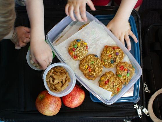 Do you carry home made food while traveling?