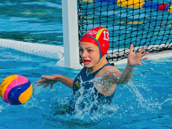 Do you find this joke funny? I tried water polo but my horse drowned.