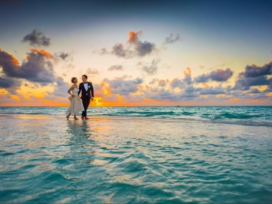 What time of day would you want your wedding to take place?