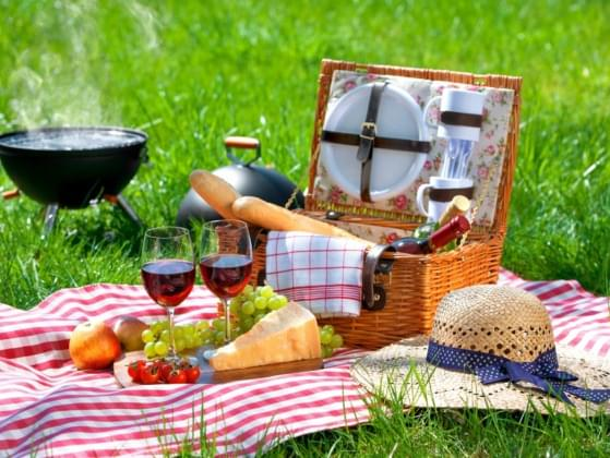 What is your favorite picnic food?
