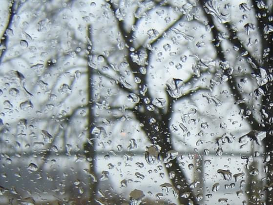 What's your favorite rainy day activity?