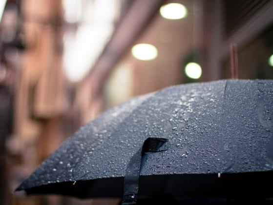 You're walking in the rain and a stranger pulls up to offer you a ride. What do you do?