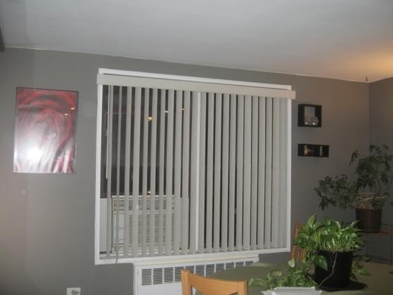 How do you feel about vertical blinds?